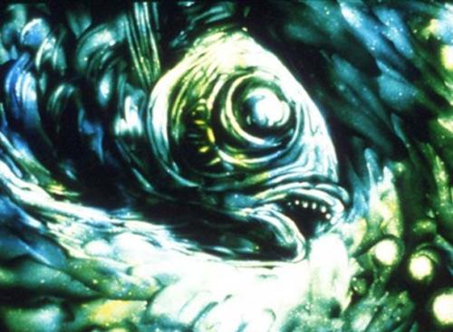 aquatic3