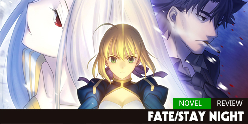 Review-FateZero