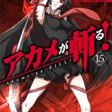 Akame ga Kill 15
